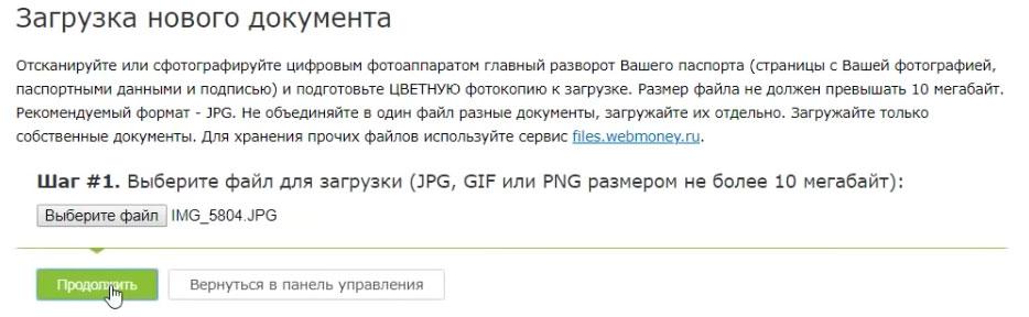 сканкопия паспорта